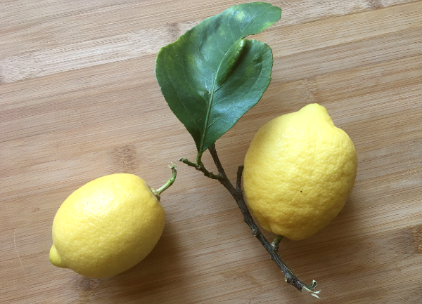 Limone sotto sale (Shiolemon)