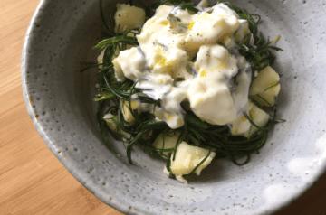 insalata di agretti e patata allo yogurt e limone sotto sale